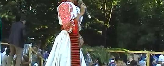 Ursa Nicoleta